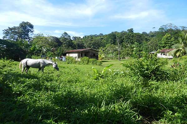 Nature-Rural